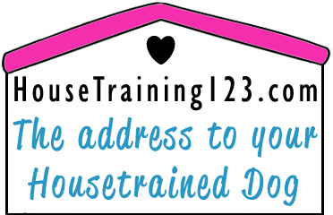 Housetraining 123 - Love Wags A Tail Dog Training